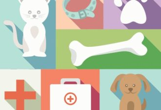 Veterinarian Vector Set Vector packs cat