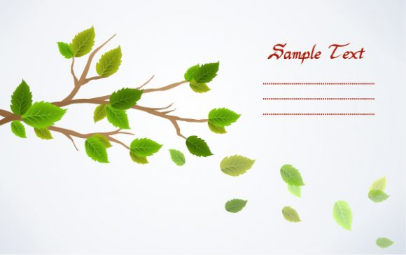 vector spring background with leaves Vector Illustrations floral