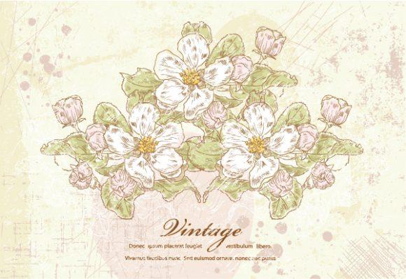 Illustration Vector Image Vintage Floral Background Vector Illustration 5