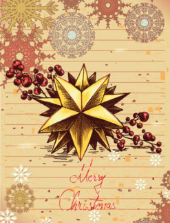 Christmas illustration with star and snow flake Vector Illustrations star