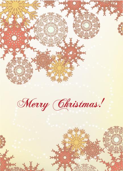Christmas Vector Christmas Illustration  Snow Flake 2015 02 02 341