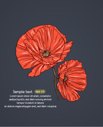 floral vector background with poppy Vector Illustrations floral