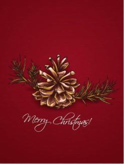 christmas vector illustration with pine cone Vector Illustrations vector