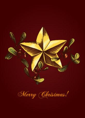 christmas vector illustration with mistletoe Vector Illustrations star