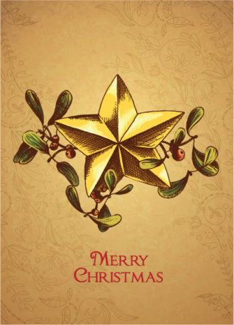 Christmas vector illustration with mistletoe and star Vector Illustrations star