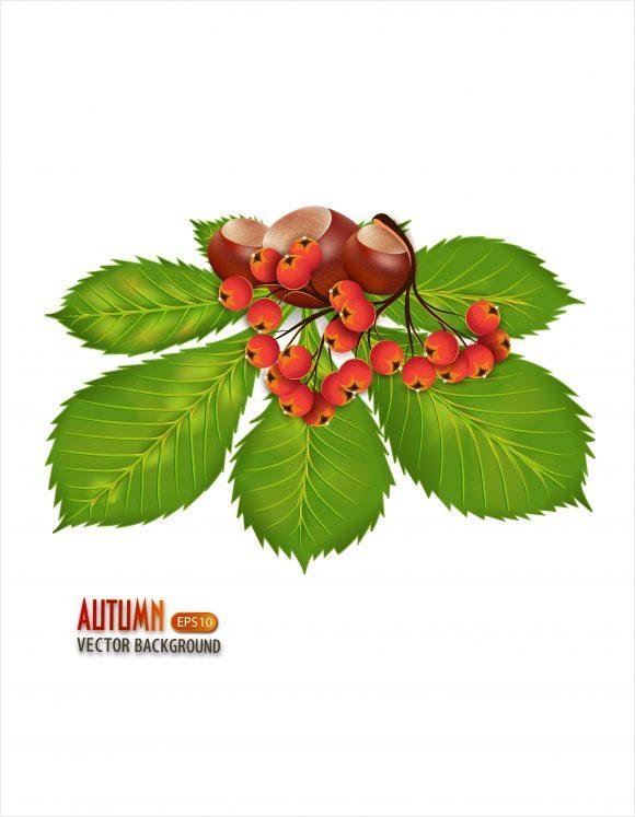 autumn background vector illustration 5