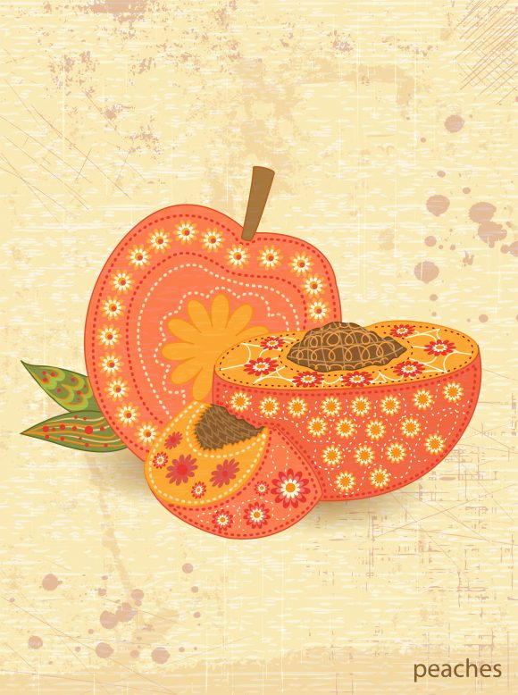 vector vintage background with peaches Vector Illustrations old