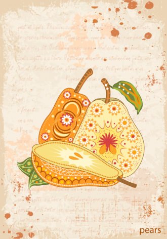 vector vintage background with pears Vector Illustrations old