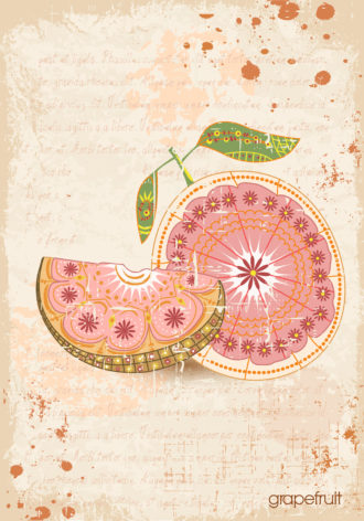vector vintage background with cantaloupe grapefruit Vector Illustrations old