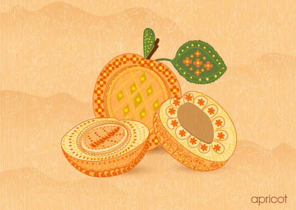 vector vintage background with apricot Vector Illustrations old