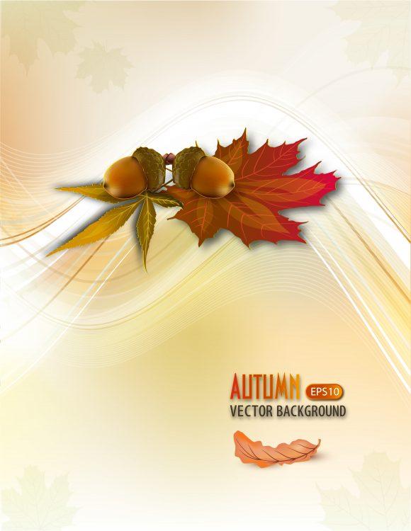 autumn background vector illustration 2015 03 03 022