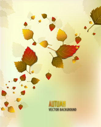 vector autumn background with lots of leaves Vector Illustrations decoration,ornate,abstract,symbol,design,illustration,background,art,artwork,creative,decor,elegant,image,vector,floral,leaf,plant,flower,fake,autumn,season,