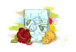 vector cocktail with colorful splashes Vector Illustrations cocktail