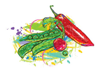 vector vegetables with colorful splashes Vector Illustrations old