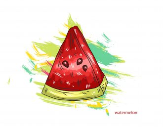 vector watermelon with colorful splashes Vector Illustrations old