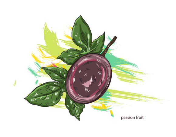vector passion fruit with colorful splashes 2015 03 03 076