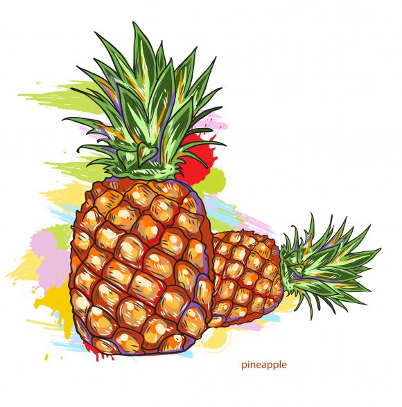 vector pineapple with colorful splashes 2015 03 03 079