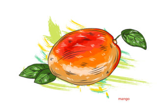 vector mango with colorful splashes Vector Illustrations old
