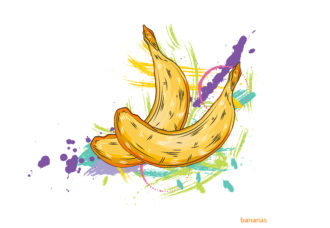 vector bananas with colorful splashes Vector Illustrations old