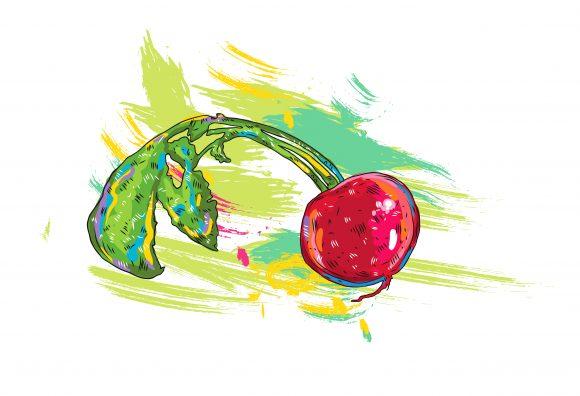 vegetables with grunge vector  illustration 2015 03 03 115