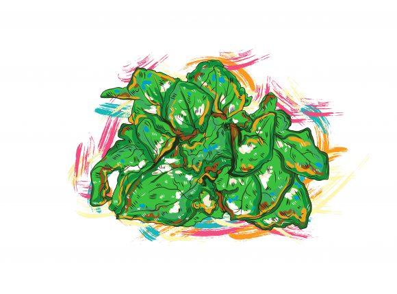 Green, Illustration Vector Graphic Vegetables  Grunge Vector  Illustration 1