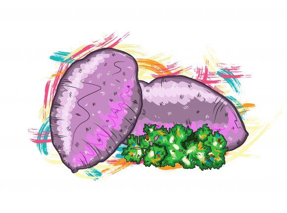Illustration Vector Artwork: Vegetables With Grunge Vector Artwork  Illustration 1