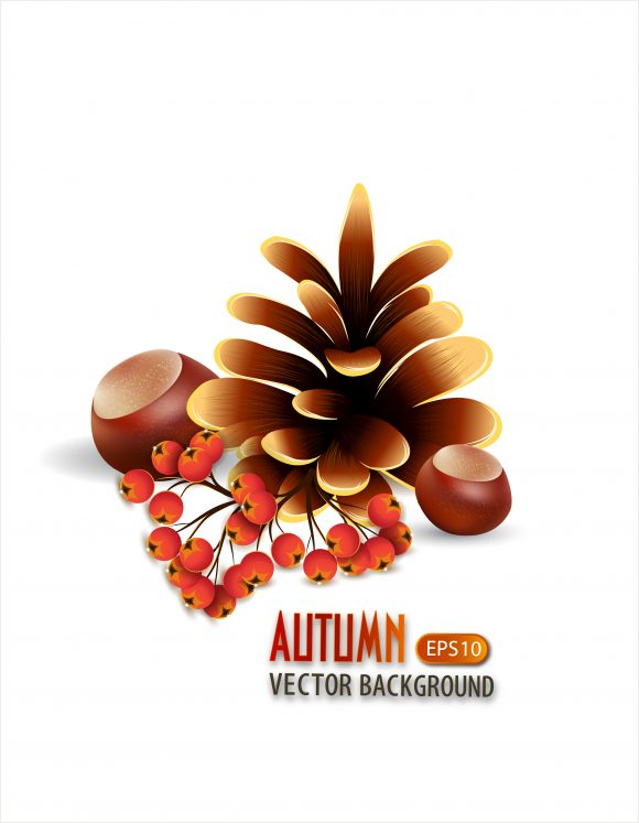 vector autumn background with pine 2015 03 03 967
