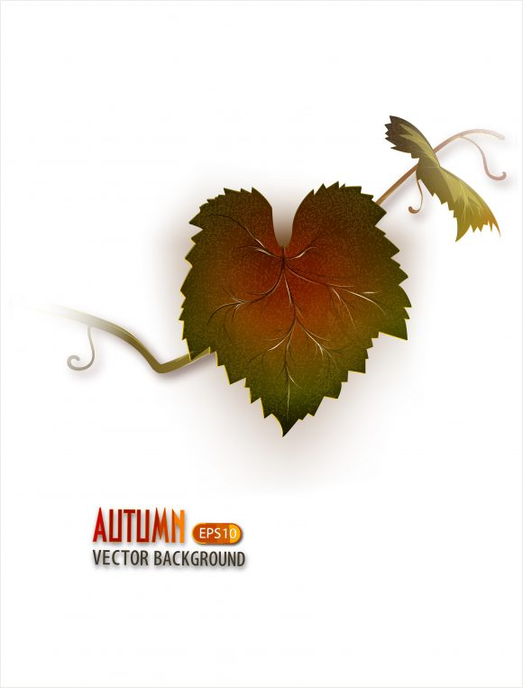 Grape Vector Artwork: Vector Artwork Autumn Background With Grape Vine 5