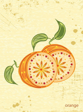 vector vintage background with oranges Vector Illustrations old