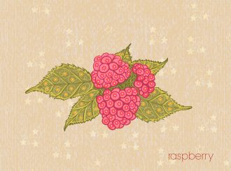 vector vintage background with raspberry Vector Illustrations old