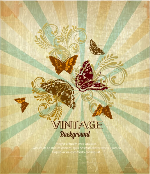 vintage vector illustration with butterfly, flowers , rays Vector Illustrations old