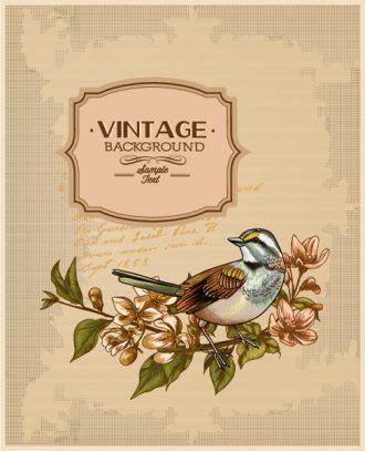 vintage vector illustration with spring flower Vector Illustrations [tag]