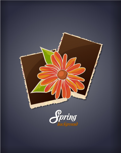 floral background vector illustration with photo frame Vector Illustrations floral