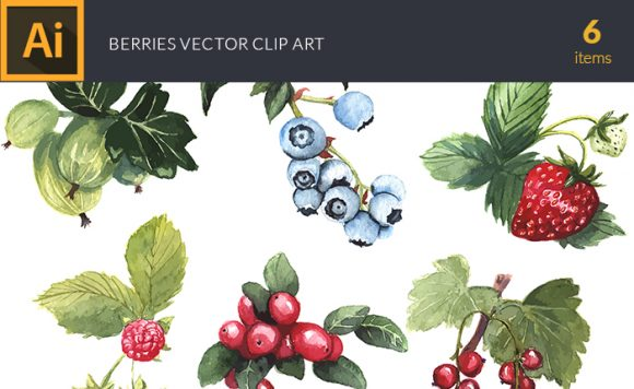 Watercolor Berries Vector Clipart design tnt vector watercolor berries small
