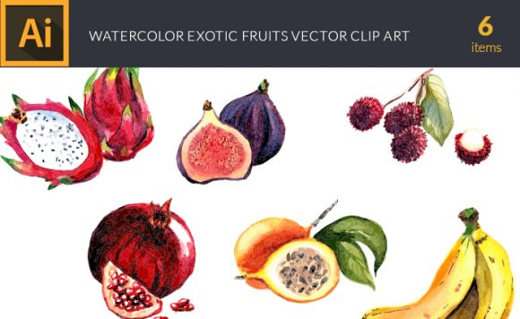 Watercolor Exotic Fruits Vector Clipart Vector packs vector