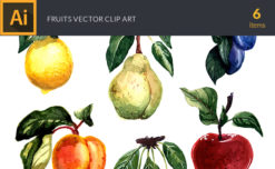 Watercolor Fruits Vector Clipart Vector packs lime