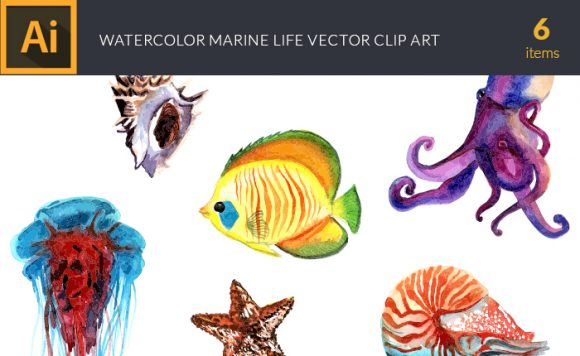 Watercolor Marine Life Vector Clipart Watercolor snail