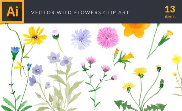 Watercolor Wild Flowers Vector Clipart Watercolor vector