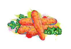 vegetables with grunge vector  illustration Vector Illustrations old