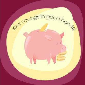 Illustrated flat vector Set Scenes pig