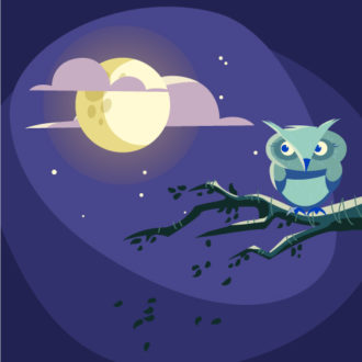 Illustrated flat vector Set Scenes night