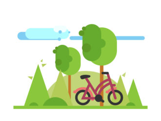 Illustrated story and typoghraphy Vector Illustrations summer
