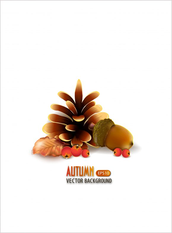 vector autumn background with pine 2015 08 420