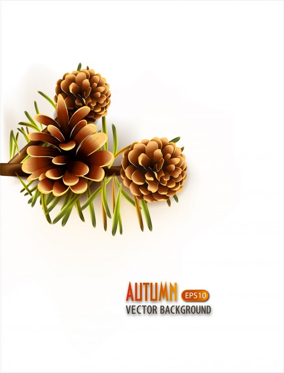 vector autumn background with pine 2015 08 447