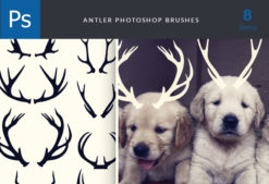 Antlers-Brushes-Set-1 Addons abr|antler|brush|funny|puppy