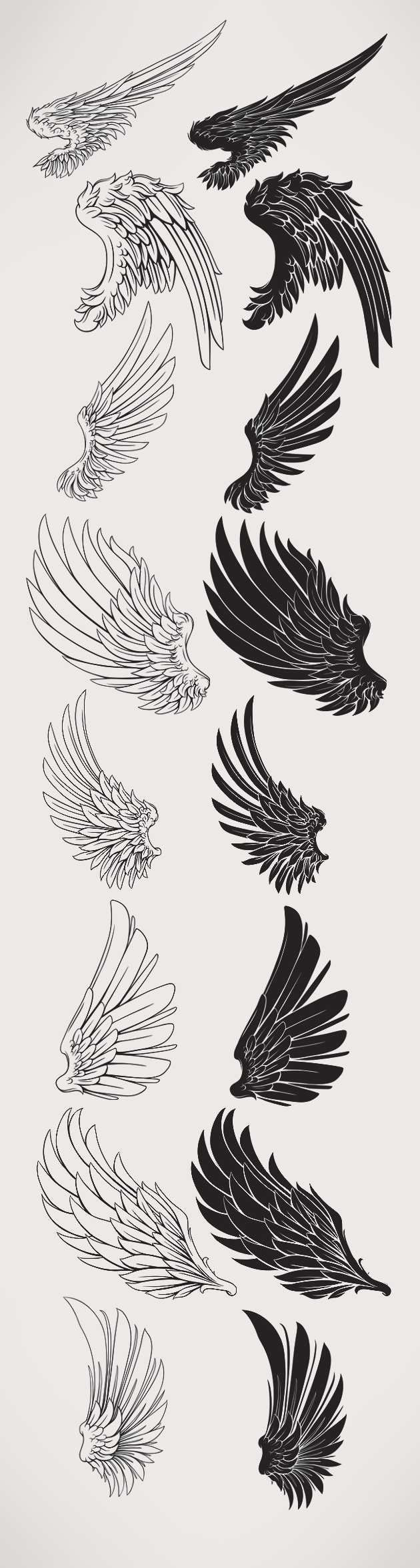 Feathered-Wings-PS-Brushes designtnt brushes feathered wings large