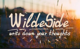 WildeSide Font Fonts Font, Otf, ttf