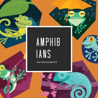 Amphibians 5 Vector Pack Vector packs Amphibians,,vector,clipart,element,illustration