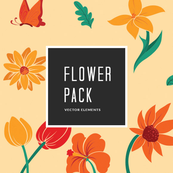Summer Flowers   Vector Pack