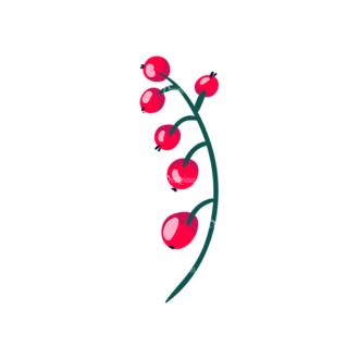 Berries Red Currant 05 Clip Art - SVG & PNG vector